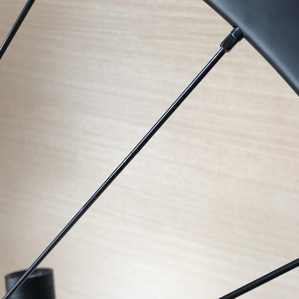 tern RIP 2020: 黒いスポークのタッチアップが完了