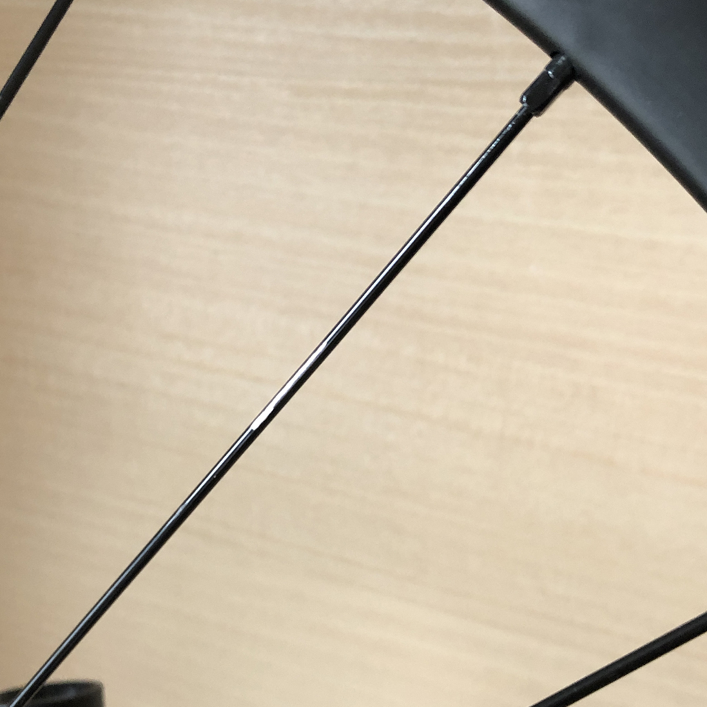 tern RIP 2020: 黒いスポークの塗装剥げ